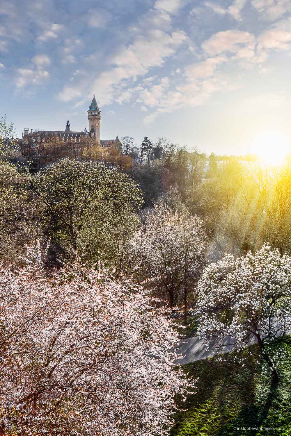 Spring in Luxembourg - The BCEE tower and the Petrusse valley during spring in Luxembourg City with trees in full bloom - City Reborn