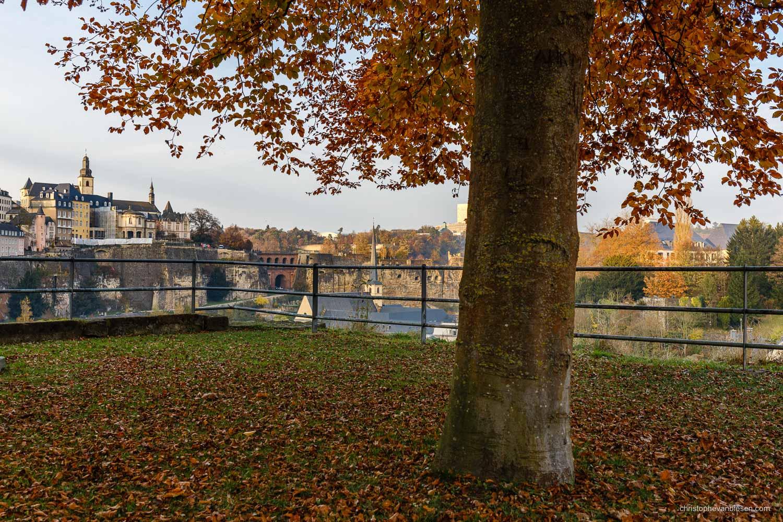 Autumn in Luxembourg - Autumn in Autumn in Luxembourg - Fall's Last Days