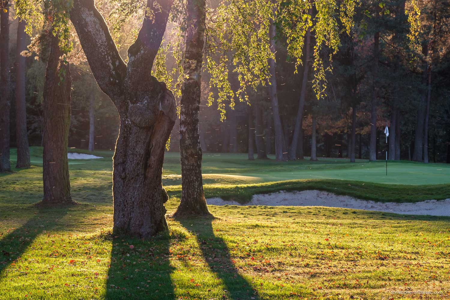 Work with me - Commission Work - Golf Club Grand Ducal Luxembourg Senningerberg - Hole 8 - Photography by Christophe Van Biesen - Luxembourg Landscape and Travel Photographer