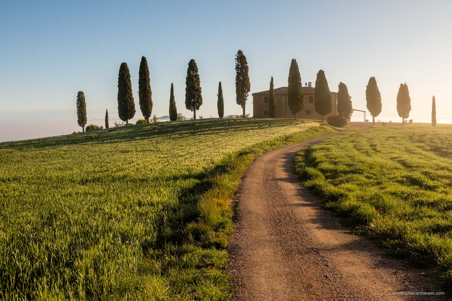 Tuscany - Italy - Dawn in Italy's Tuscany, in the Val d'Orcia near San Quirico d'Orcia - Southern Life