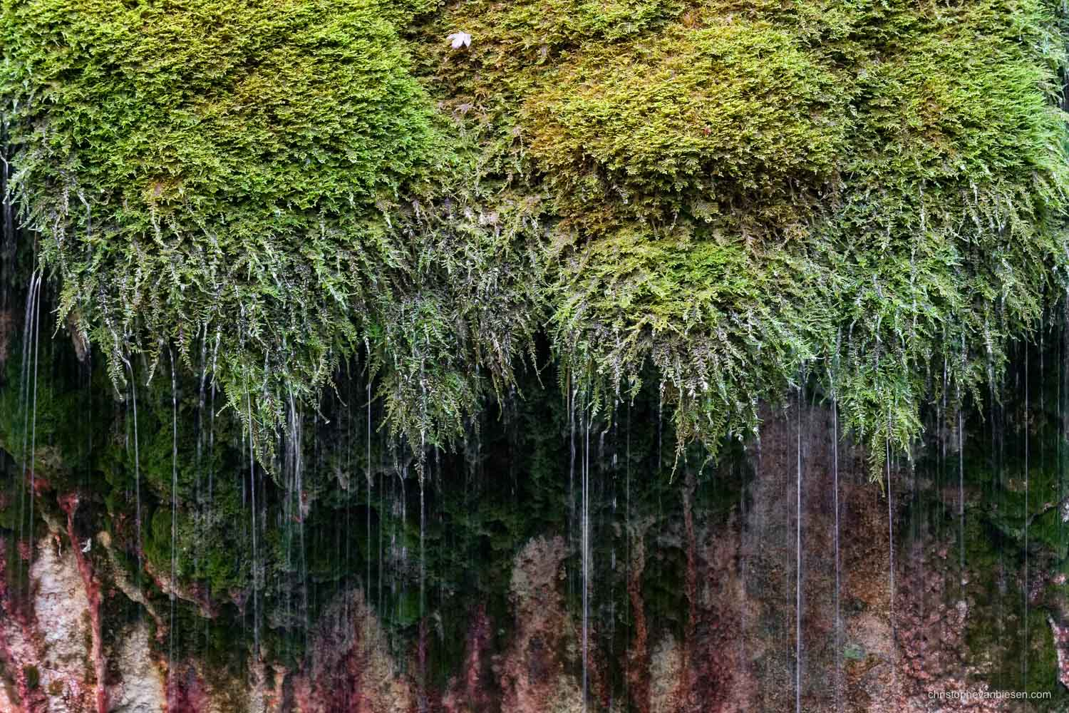 Visit the Mullerthal - Luxembourg - The Kalktuffquelle in the Mullerthal region in Luxembourg - Moss Waterfall