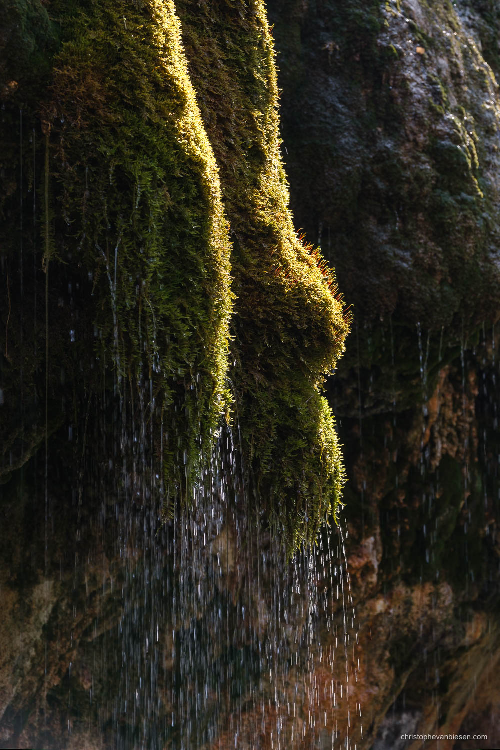 Visit the Mullerthal - Luxembourg - Flowing water of the Kalktuffquelle in Luxembourg's Mullerthal region - Kissed by Light