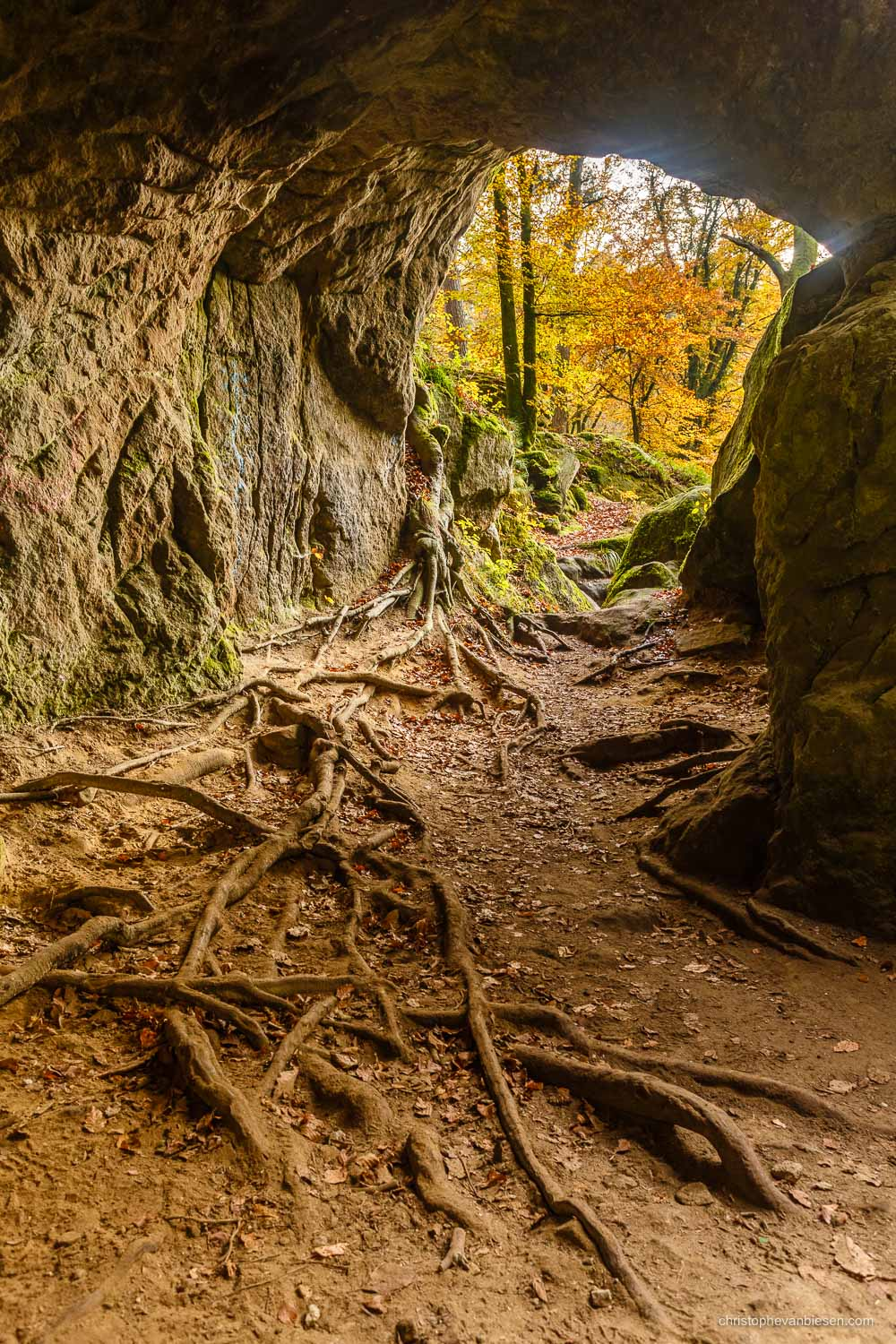Visit the Mullerthal - Luxembourg - Autumn in Luxembourg's forests in the Mullerthal region near Berdorf - Deep Roots