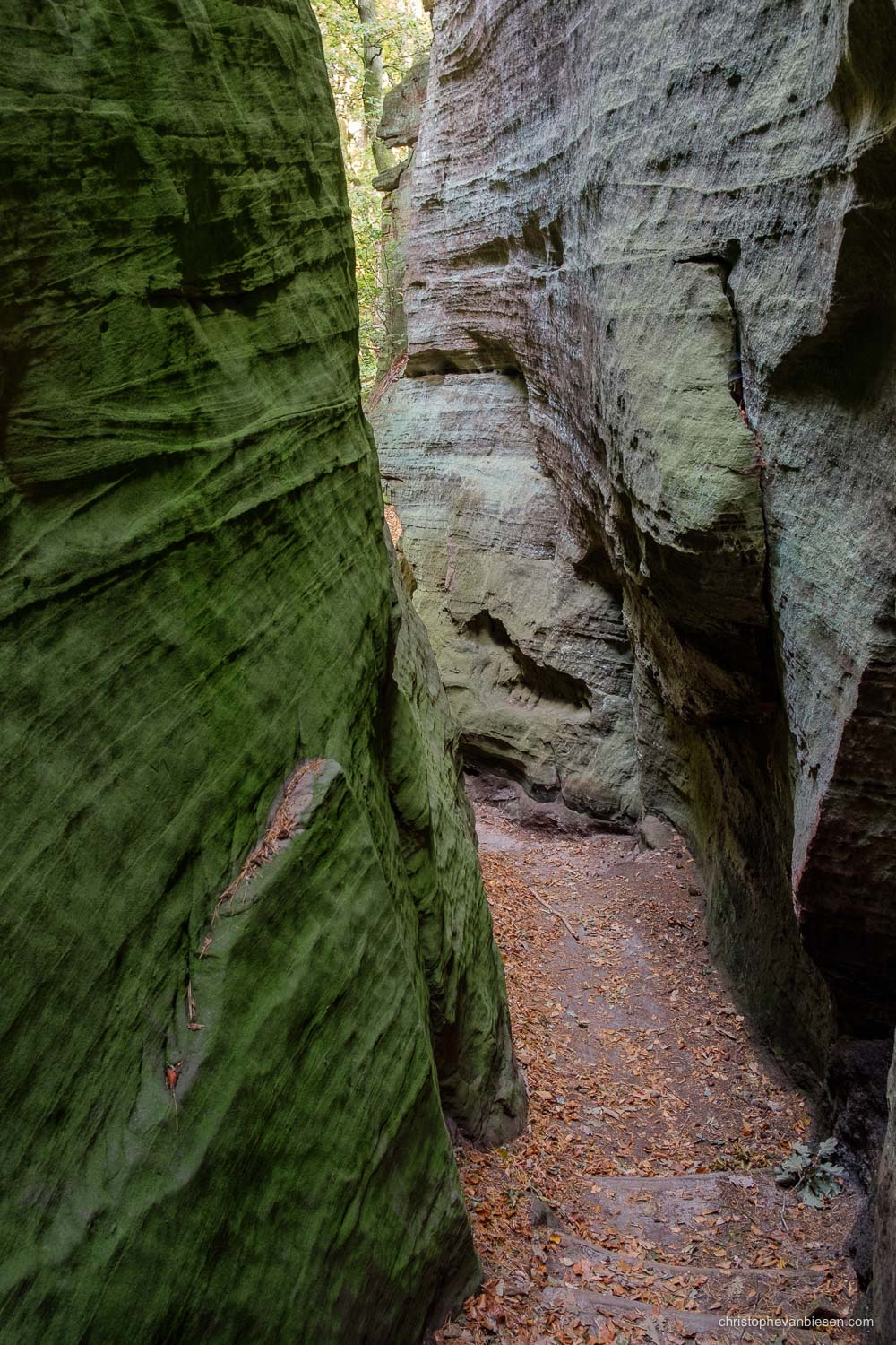 Visit the Mullerthal - Luxembourg - Caves in the Mullerthal region in Luxembourg - Mullerthal Canyon
