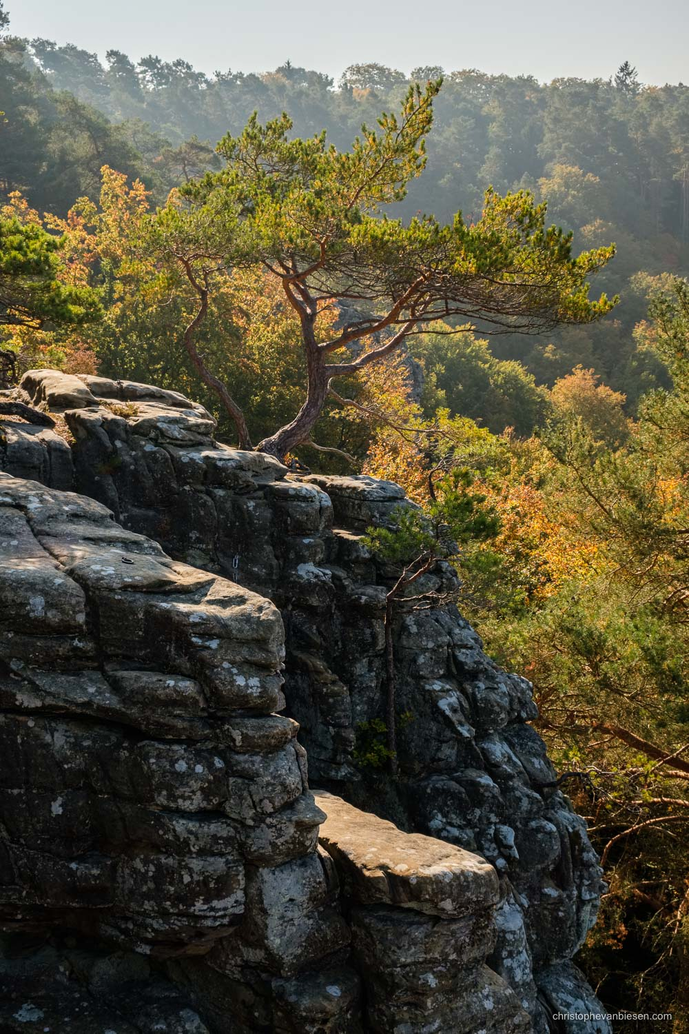 Visit the Mullerthal - Luxembourg - Fall high above the Mullerthal region in Luxembourg - Mullerthal Heights