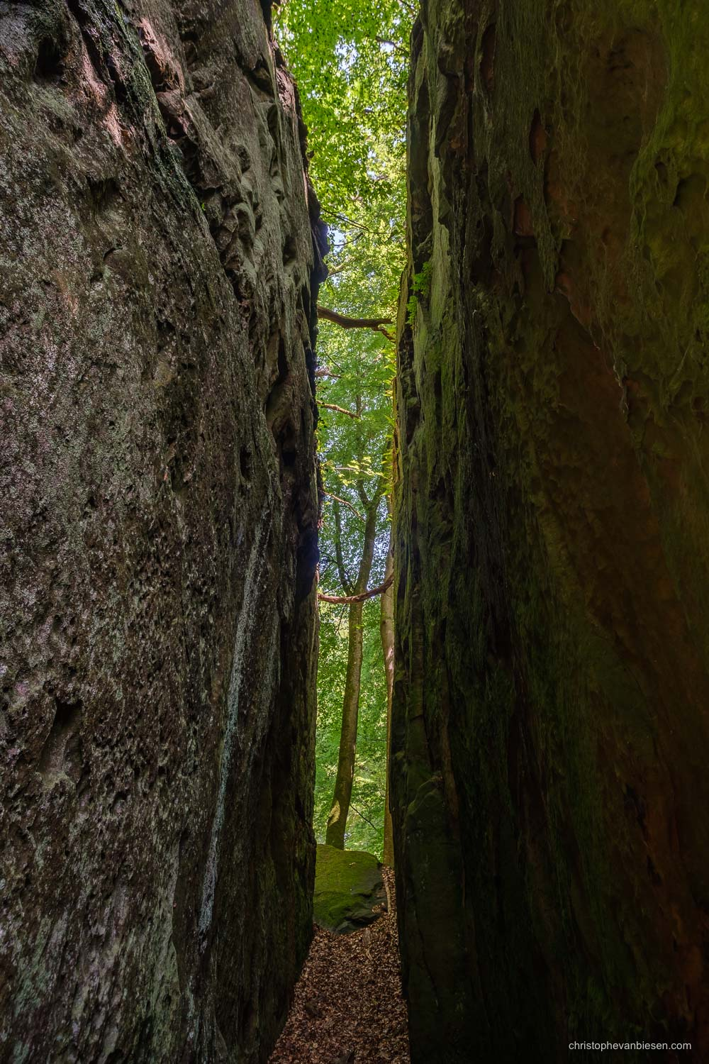 Visit the Mullerthal - Luxembourg - Narrow passage in the Mullerthal's rock formations in eastern Luxembourg - Tunnel View