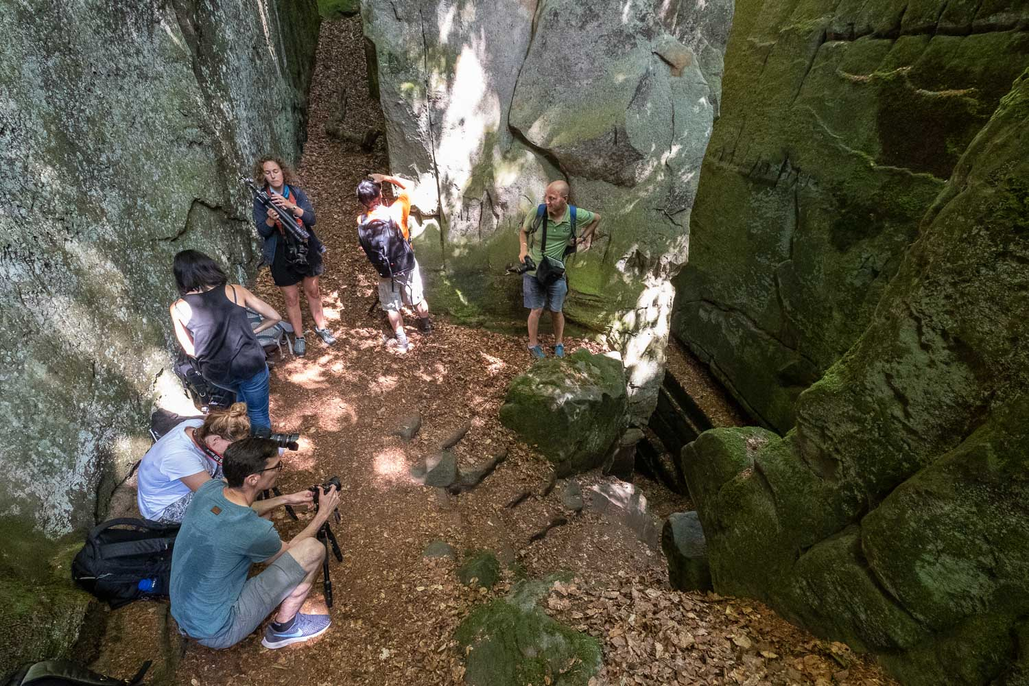 Visit the Mullerthal - Luxembourg - Photography Workshop - Photo Course