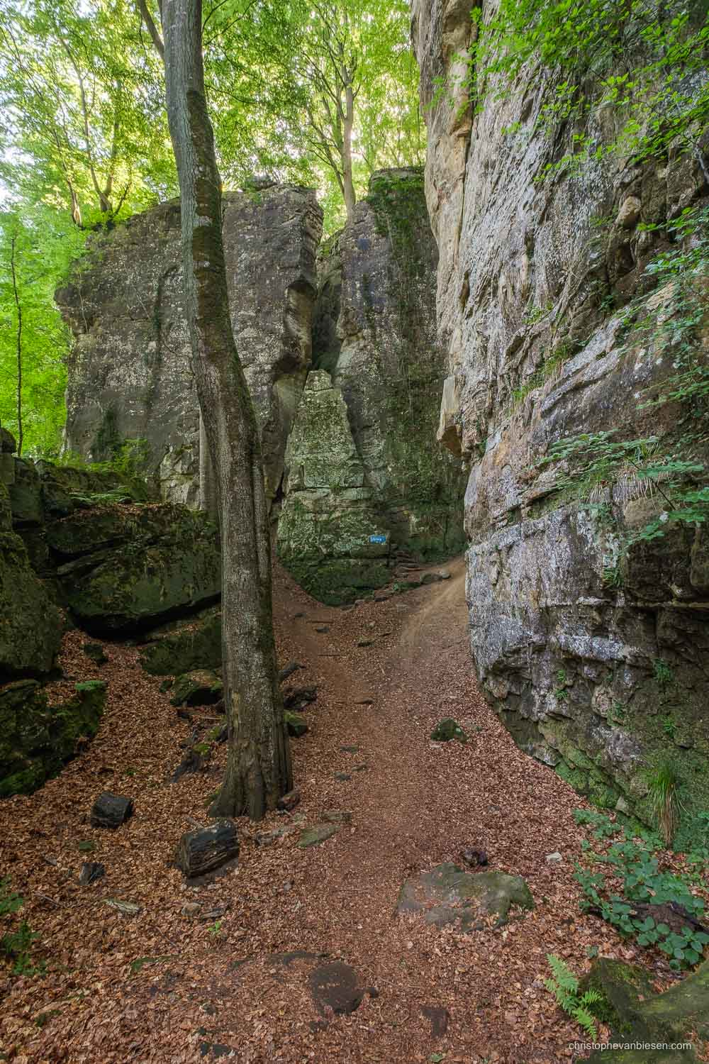 Photography Workshop - Luxembourg - Mullerthal - Path through the Mullerthal rock formations in eastern Luxembourg - Eulenburg