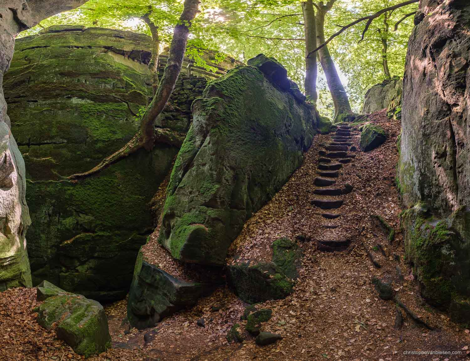 Photography Workshop - Luxembourg - Mullerthal - Path through the Mullerthal rock formations in eastern Luxembourg - Goldfralay