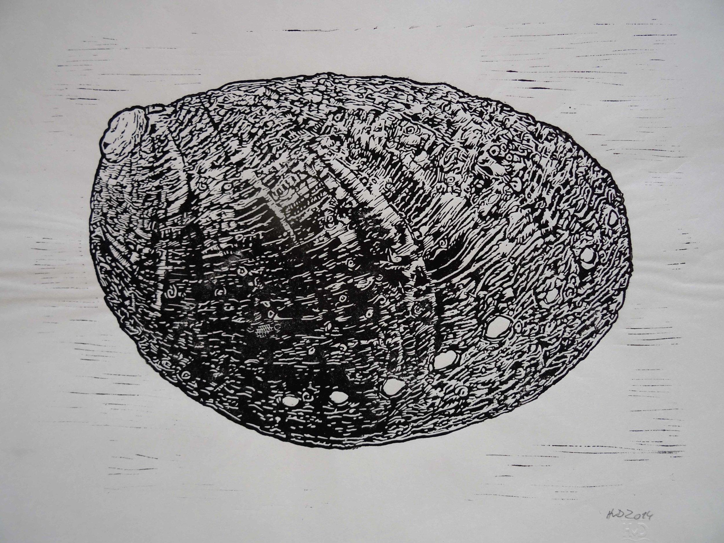 114 - Meerohr, lino 30x40 cm, 60 €