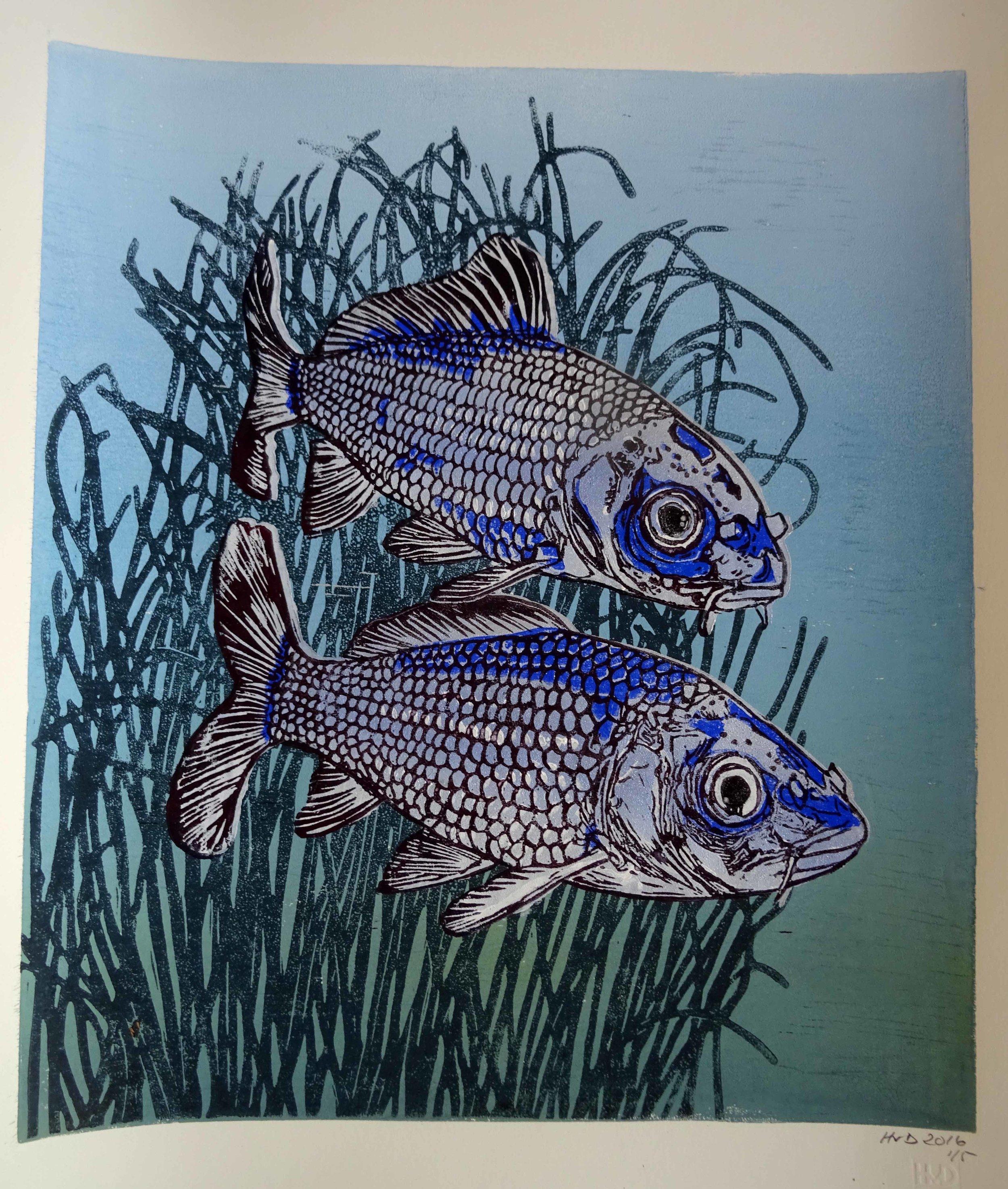 211 - Kois, 4-plate lino 40x35 cm, 200 €