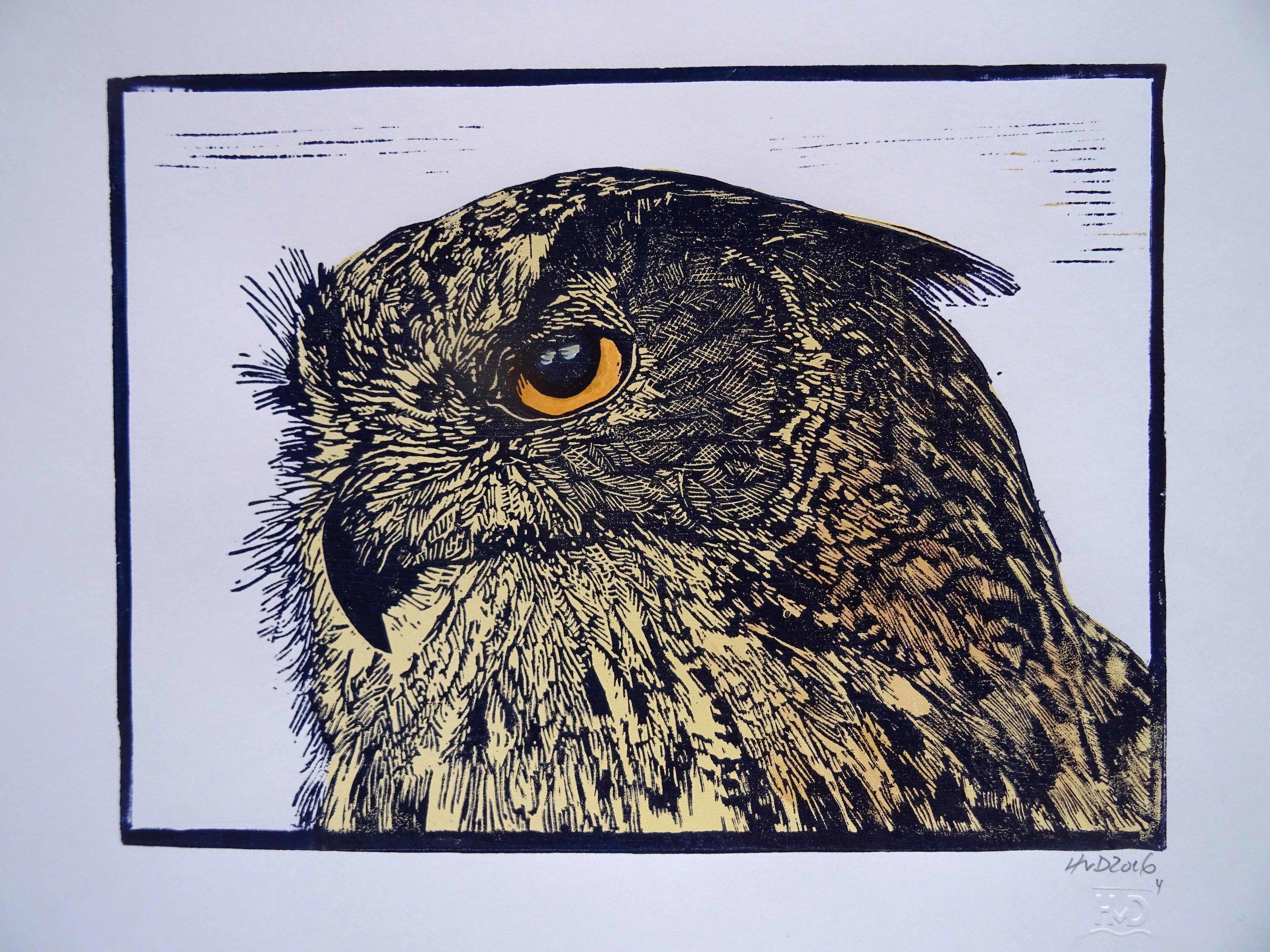 226 - Eule 3, 2-plate lino 30x42 cm, 70 €