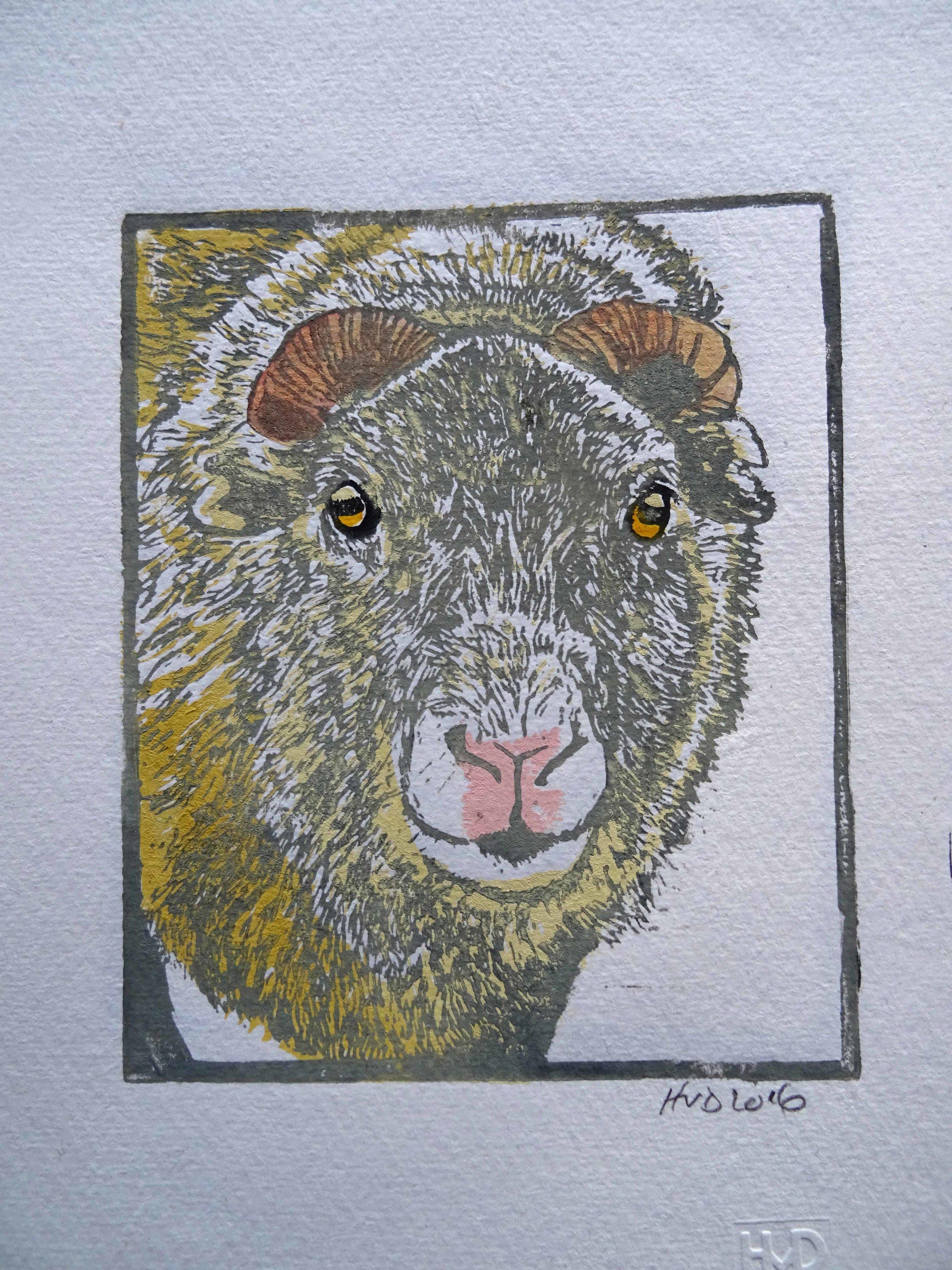 148A - sheep head. 2-plate lino 16x13 cm, 40 €