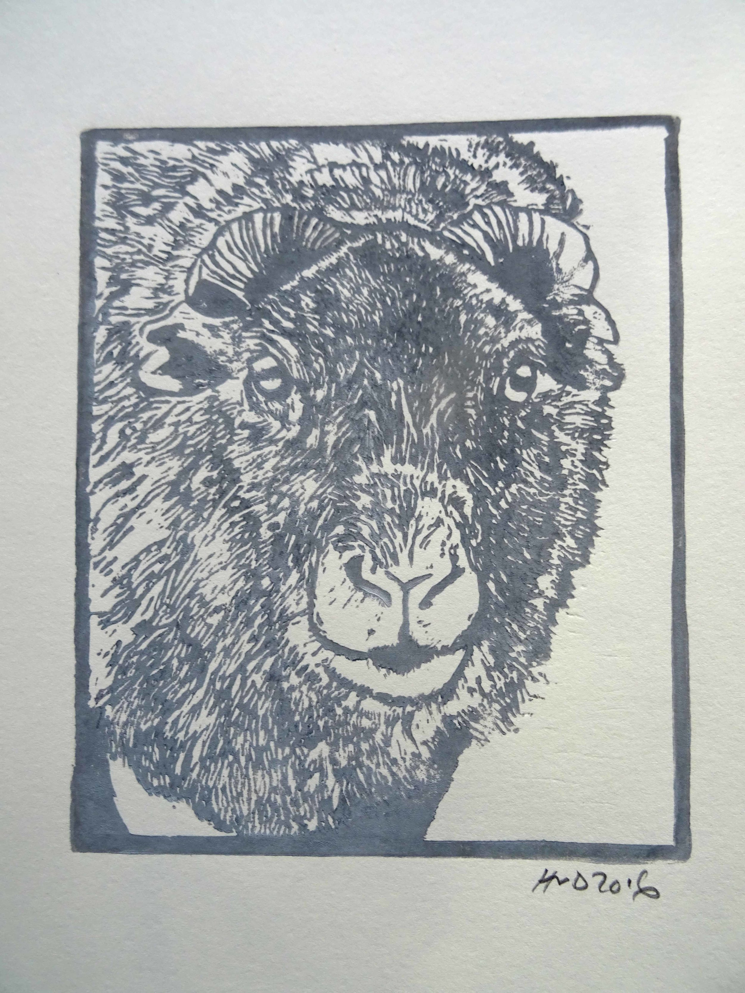 148A - sheep head, lno 16x13cm, 20 €