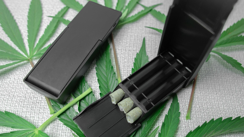 JPAQtrio cannabis.jpg