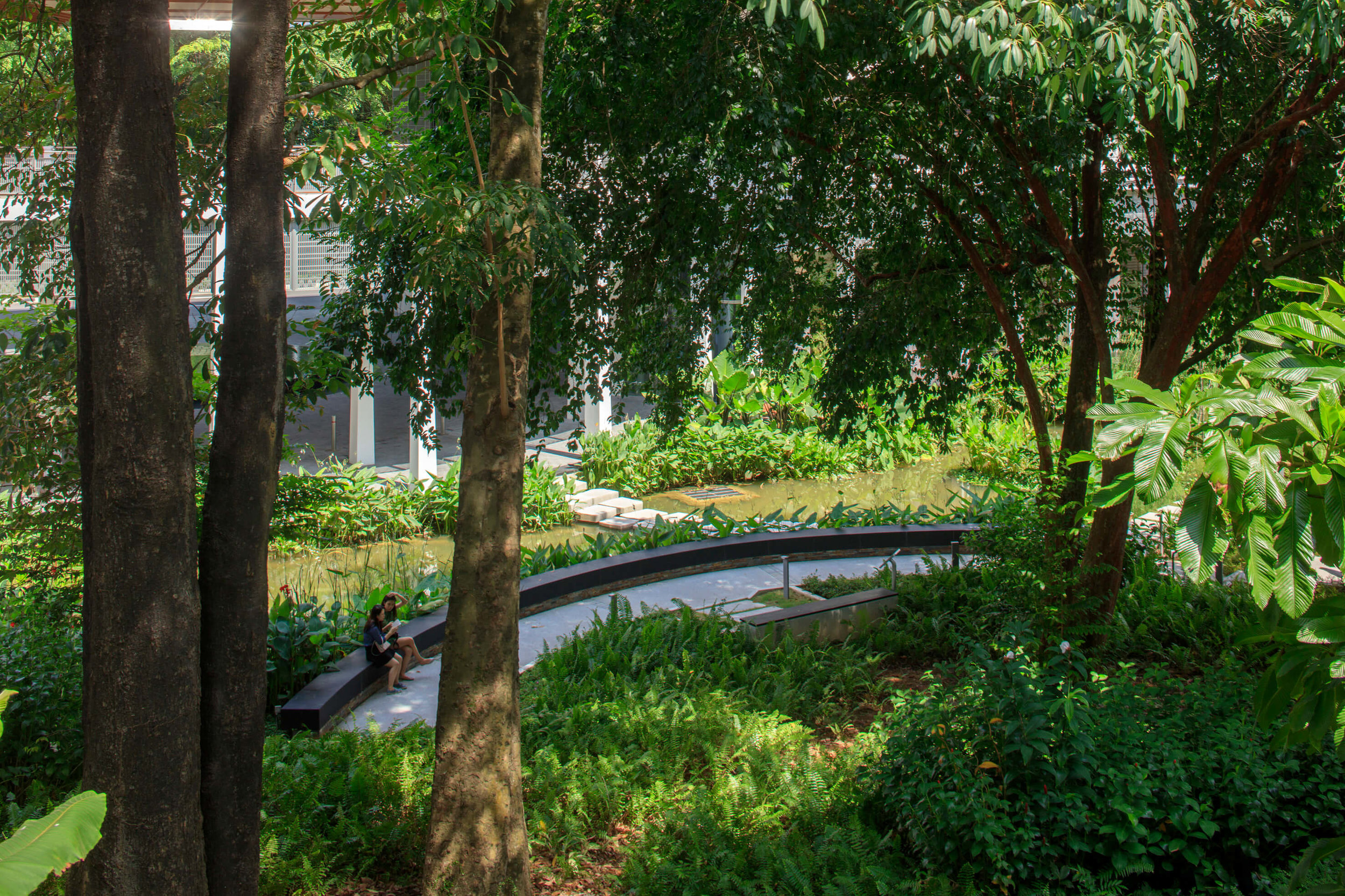 campus green bench - Copy.jpg