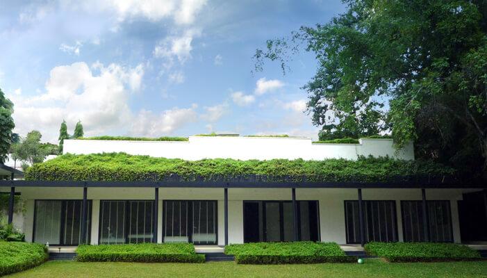 belmont green roof bluesky.jpg