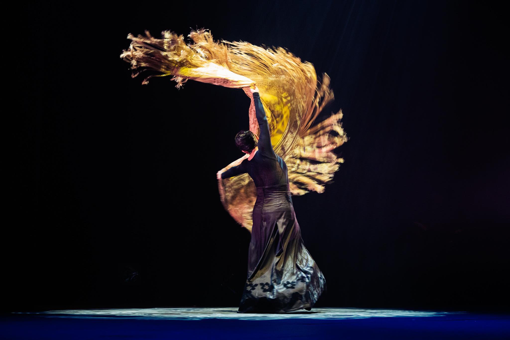 Image of Eva Yerbabuena dance photography, fotografia de escena, fotografo de danza, dance photographer, stage photography