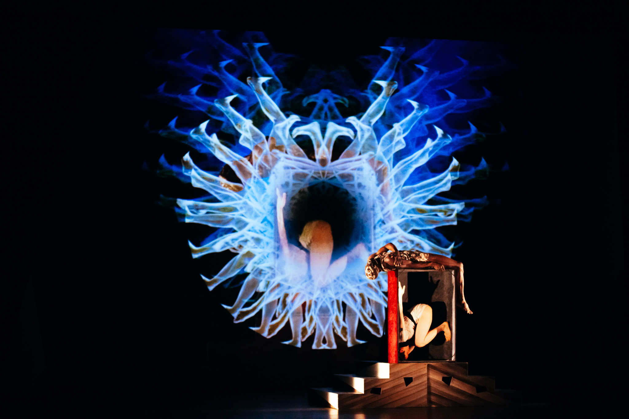 image of cie Philippe Decouflé dance photography, fotografia de escena, fotografo de danza, dance photographer, stage photography