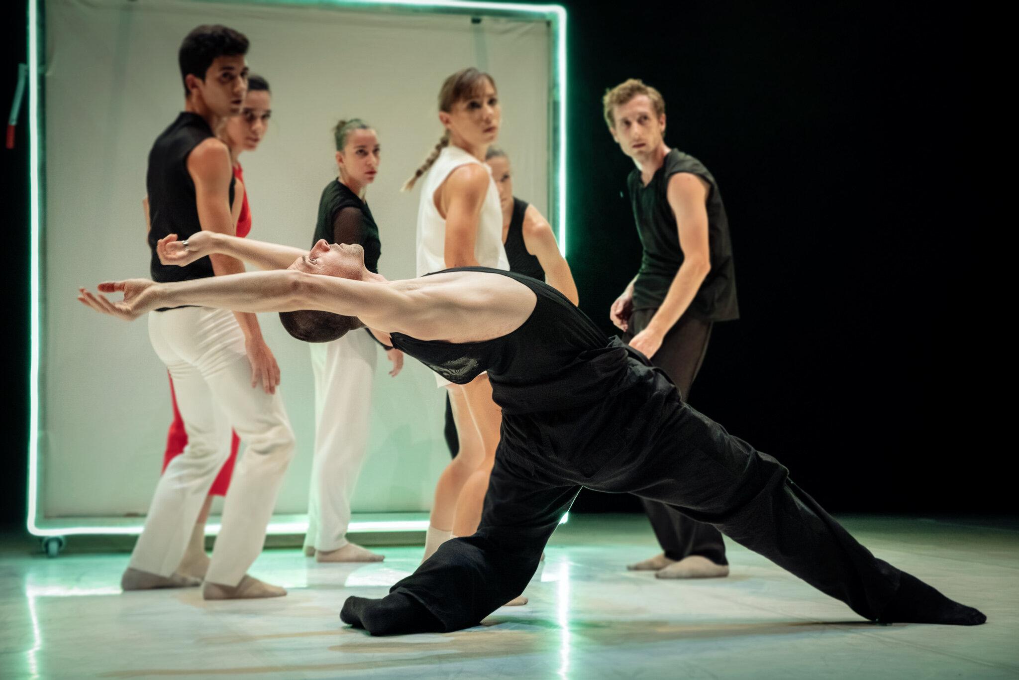Metamorphosis Dance - Dog Talks -