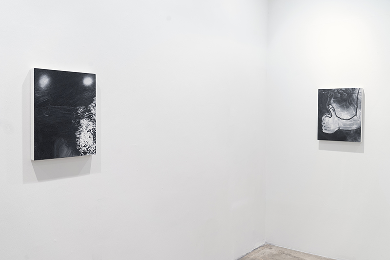 Installation view: Eric Helvie Leviathan