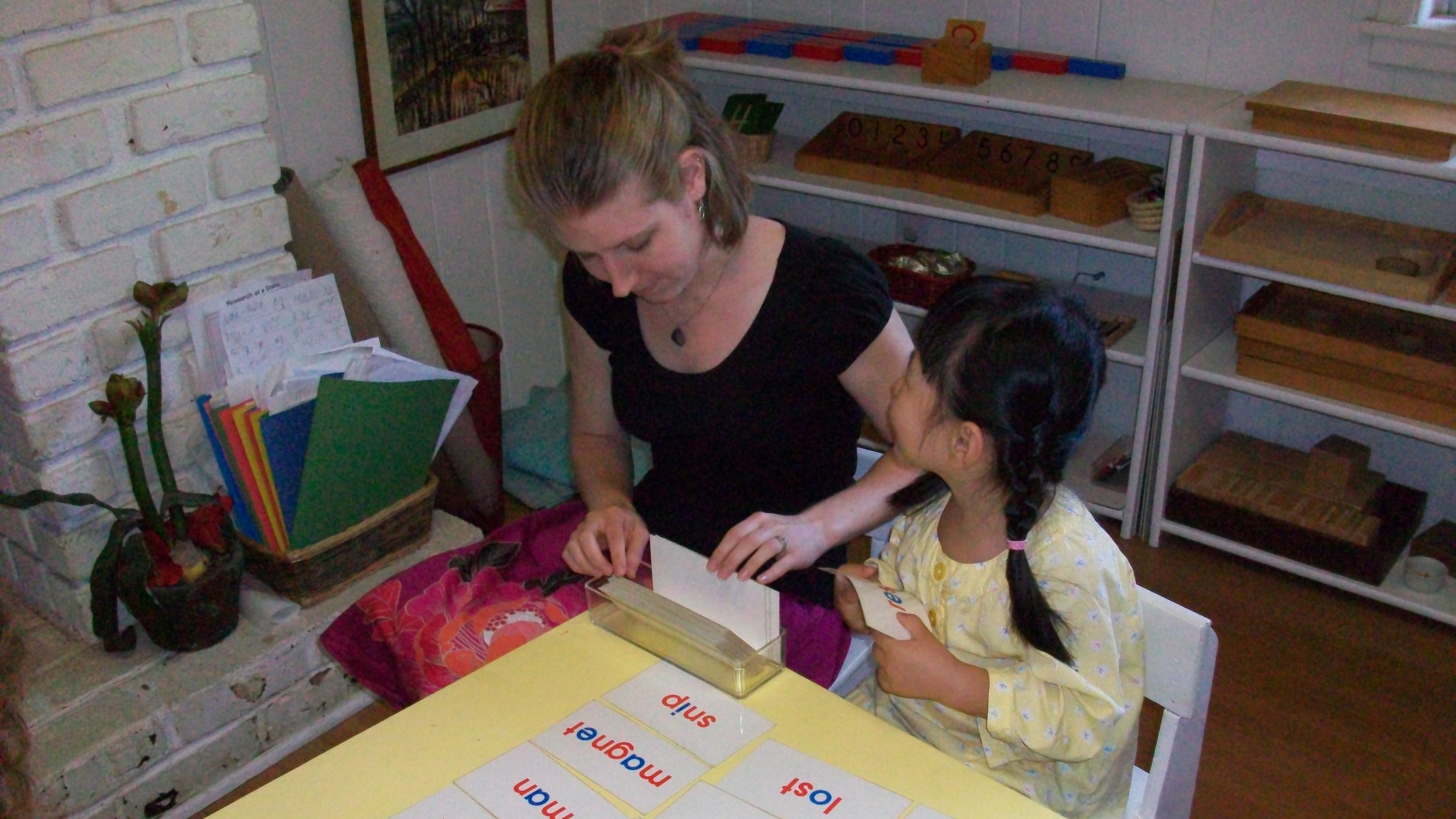 Leanne Gray - I have over 10 years experience teaching young children in both traditional classrooms and in a homeschool setting.Combined with my authentic AMI training, I have a deep knowledge of the Montessori curriculum, methodology, and practical application with thousands of children.