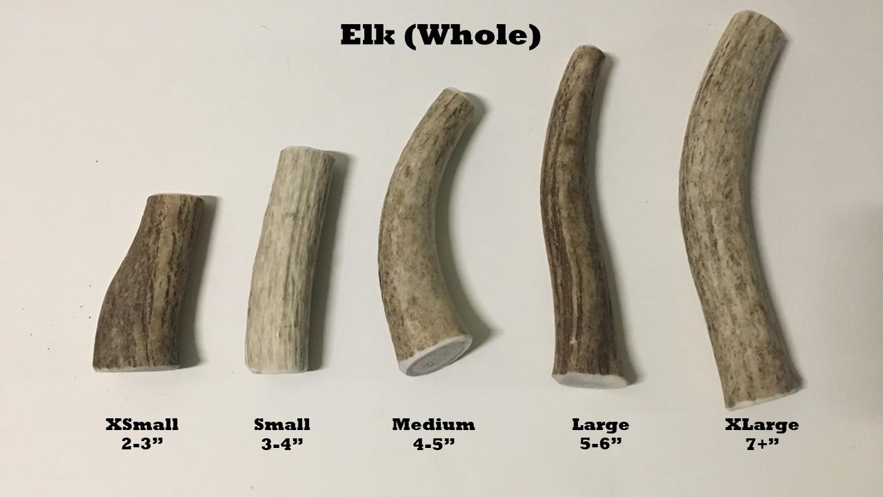 Elk whole sizes.jpg
