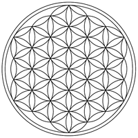 flower-of-life-19circles36arcs-enclosed.png