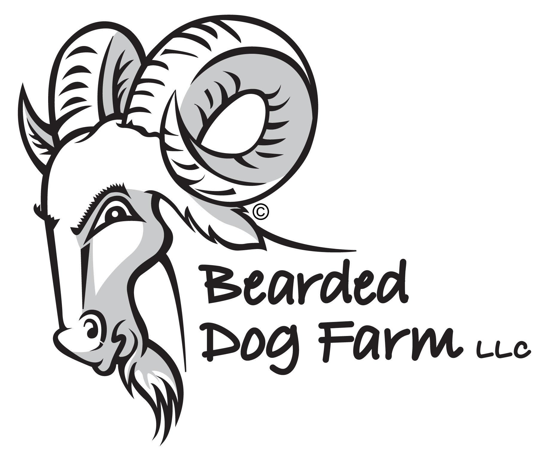 bearded dog.jpg