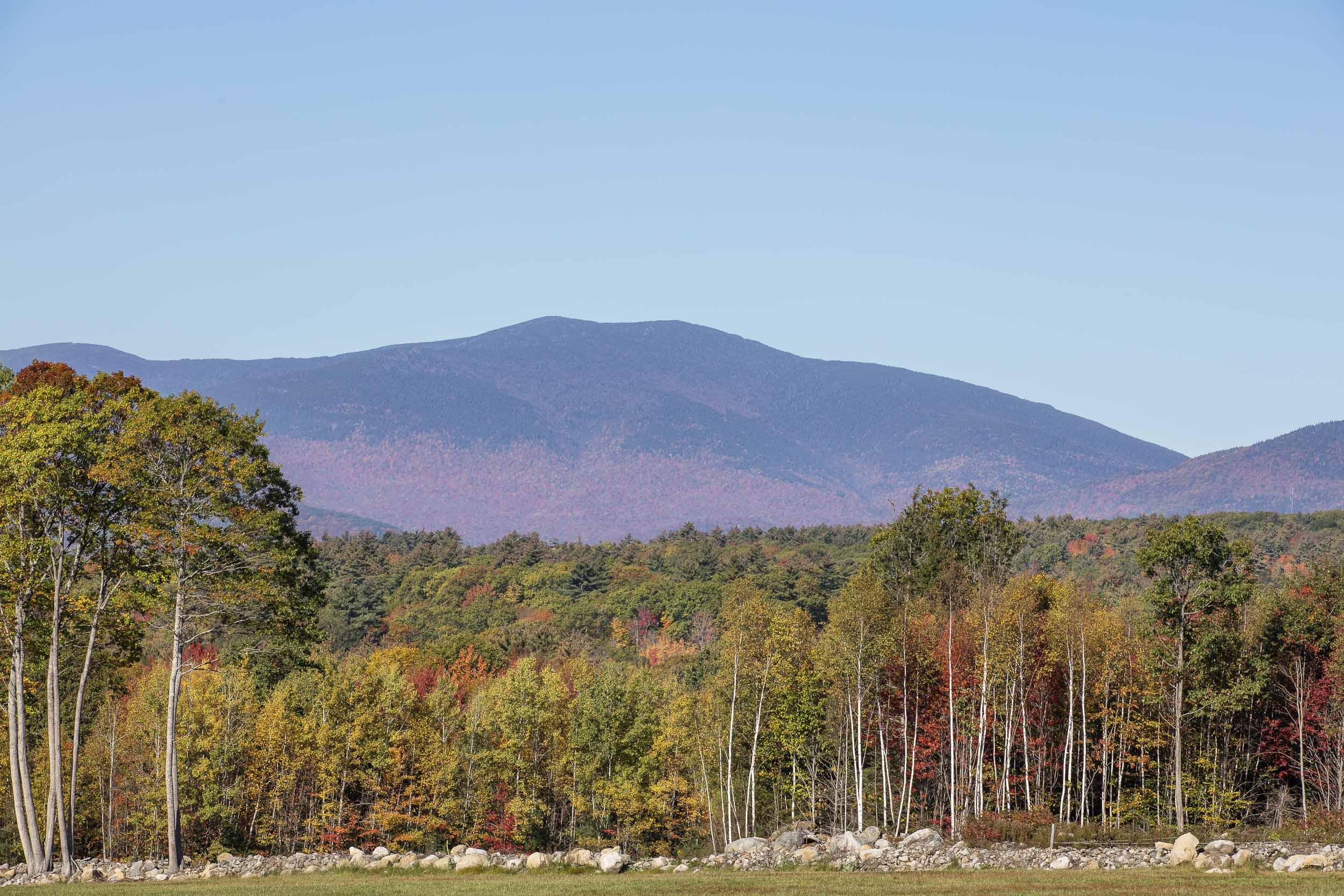 View from Whiteface Hollow