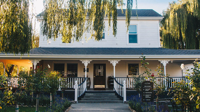 'Beyond Organic': The Sonoma Trailblazers Redefining Sustainable Winemaking