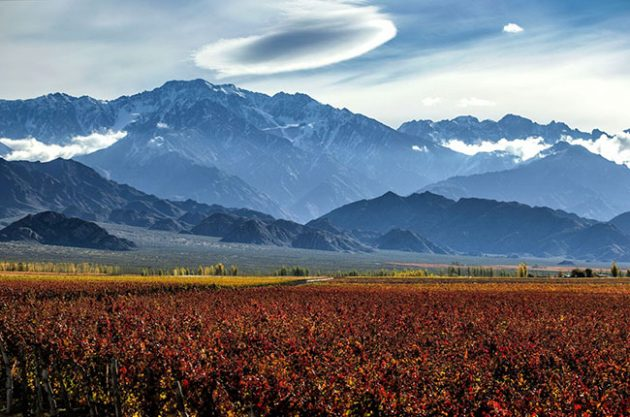 Treating Malbec 'like Pinot Noir': The new terroir approach with Zuccardi