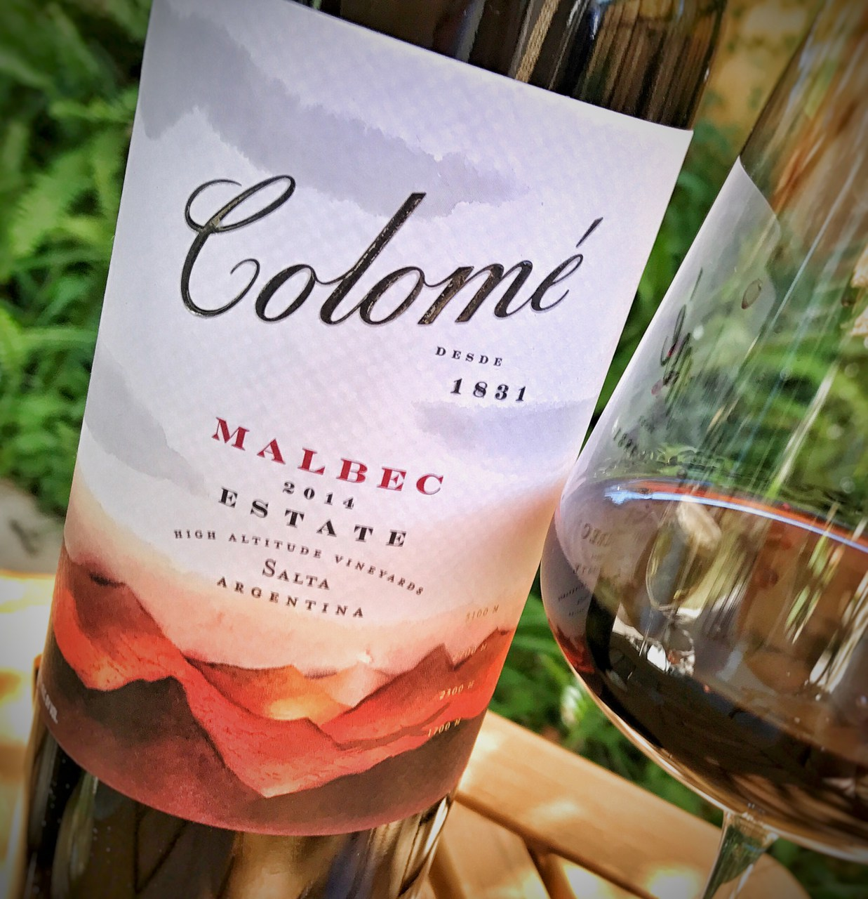 Great value Malbec from Argentina: A buying guide