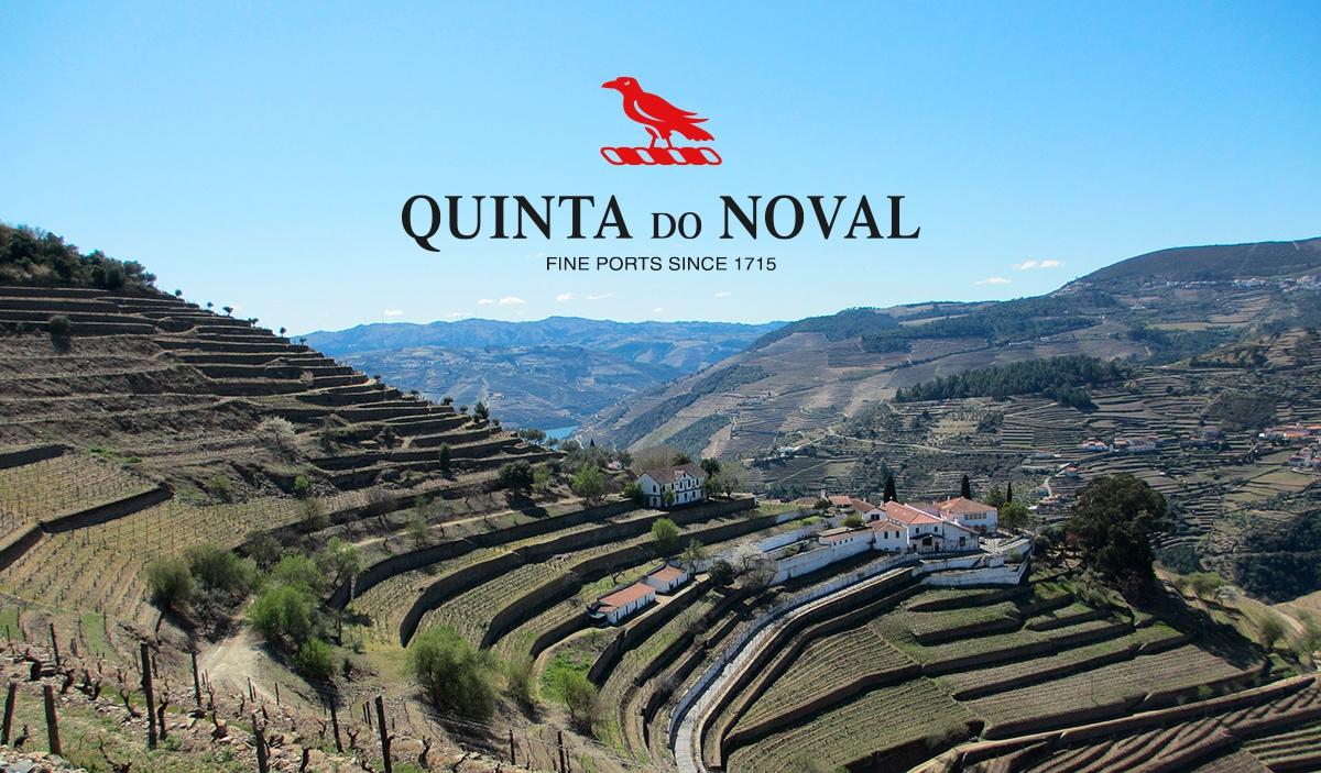 The Rebirth of Quinta do Noval