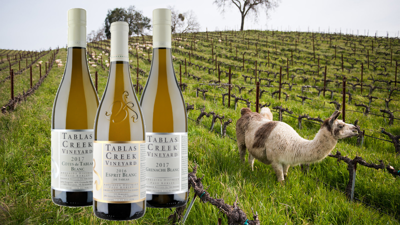9 Winter Whites from California