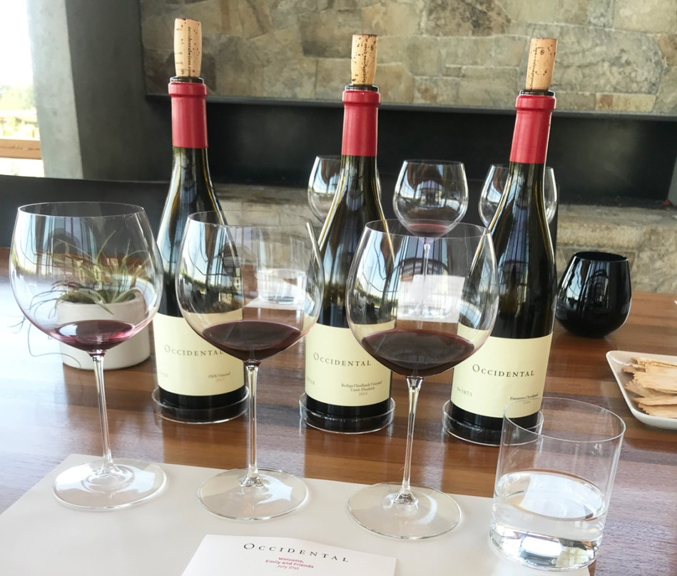 Sonoma Preview: January 2019 New Releases with Occidental Wines