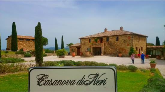 Brunello's new generation: six top producers and their wines