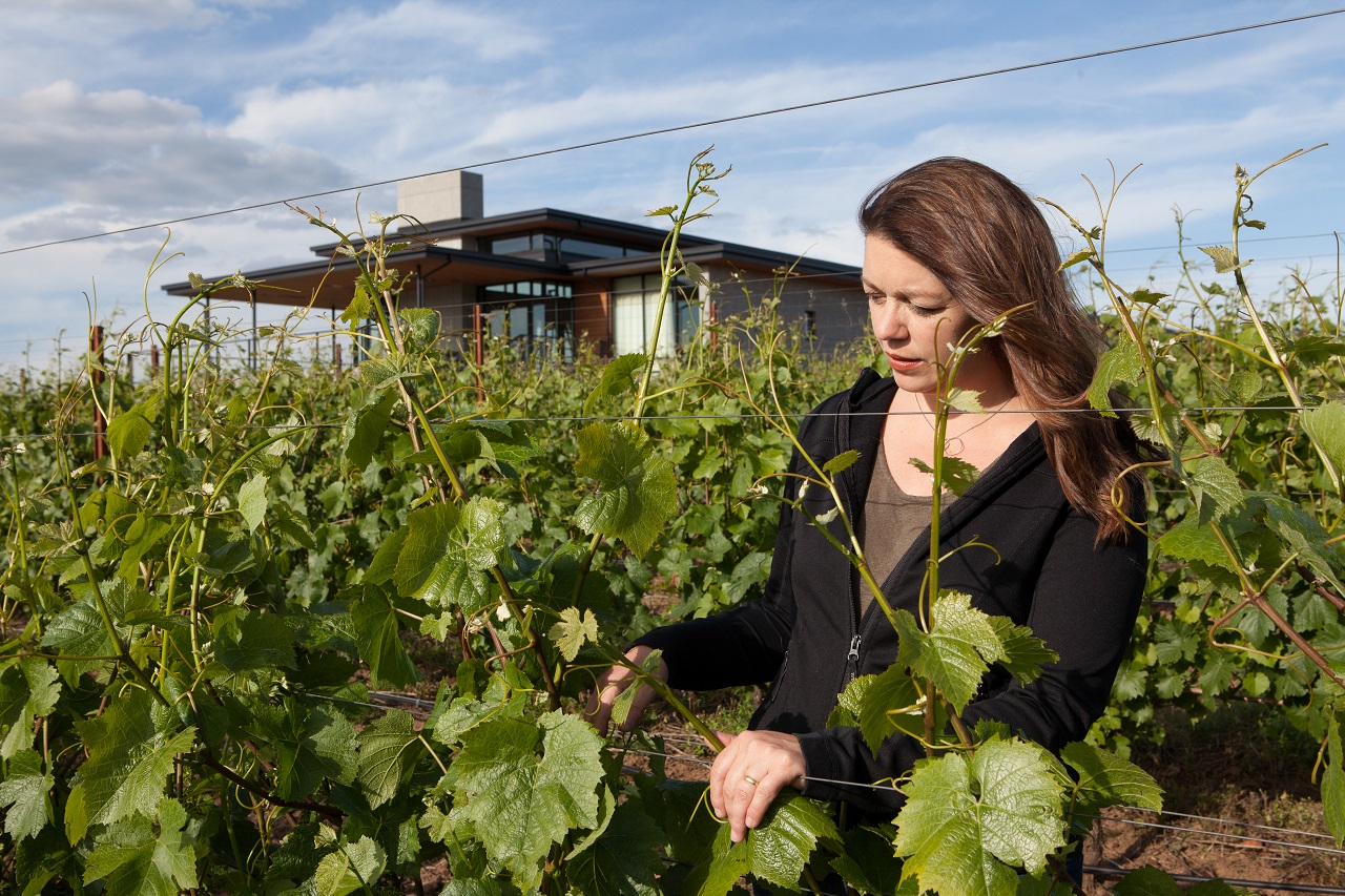 Luisa Ponzi: Tossing Aside Fear In Order To Collaborate With Wine