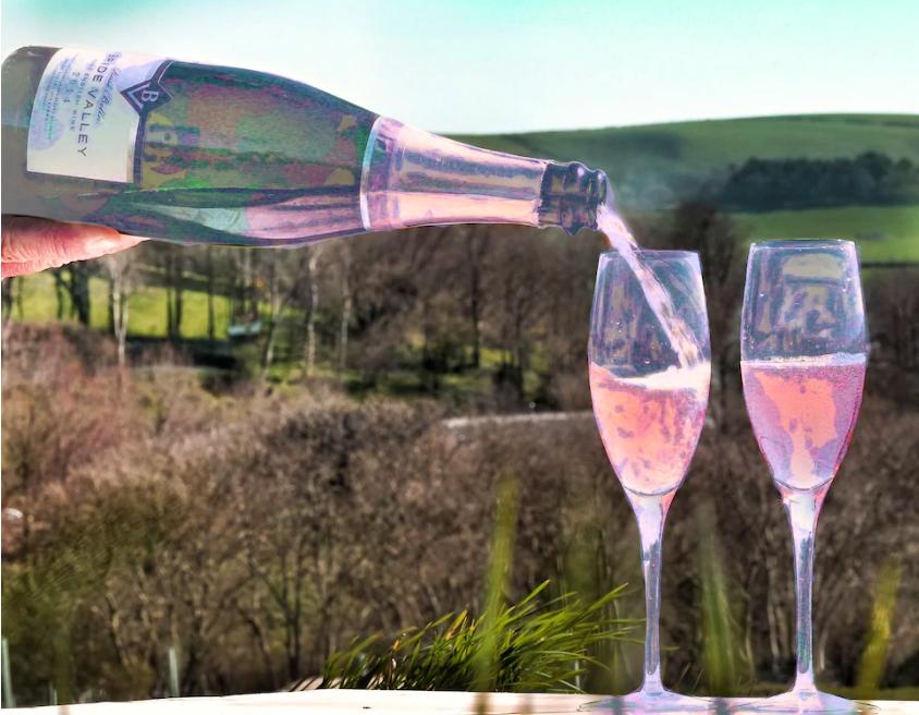 Ten top-notch English wines, chosen by Susy Atkins