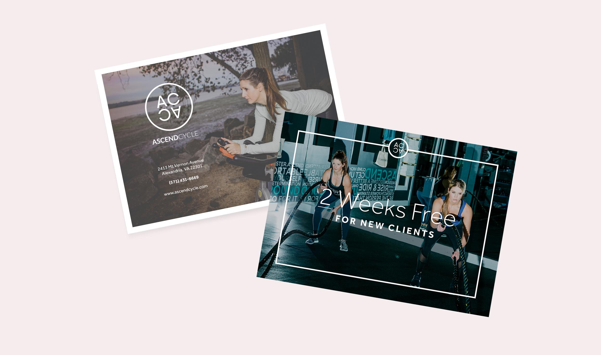 AC promo cards.jpg
