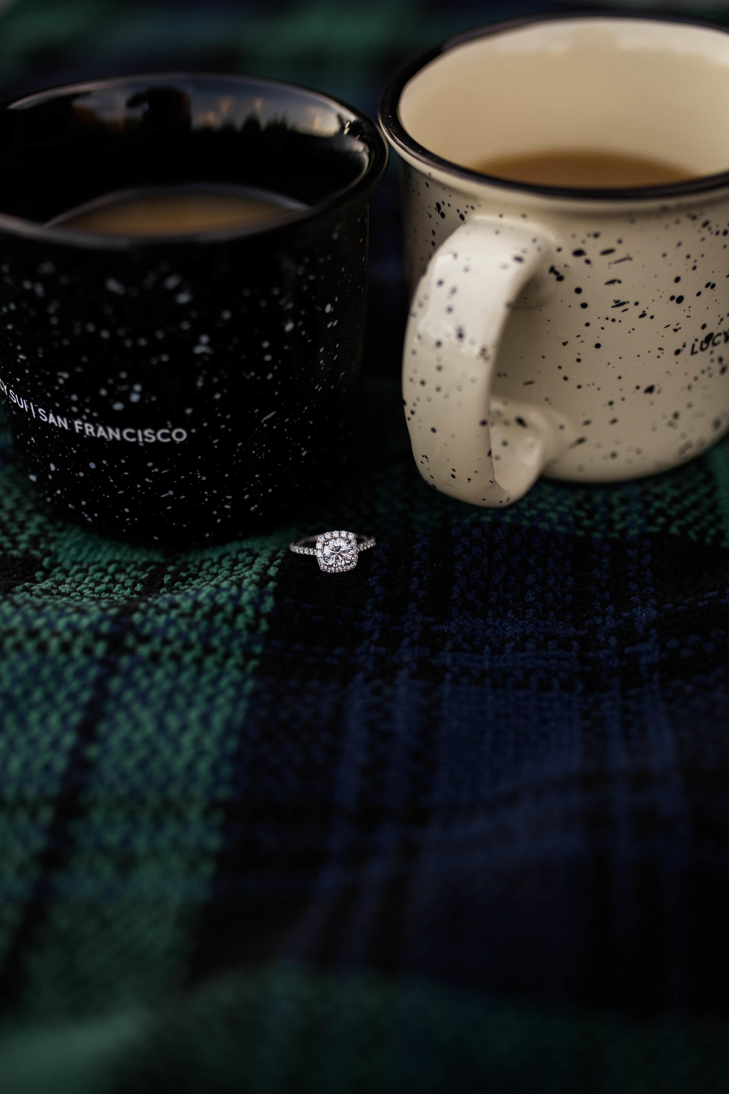 Rings and Coffee | Engagement Session | Cedar Creek Nursery | Montevallo, AL