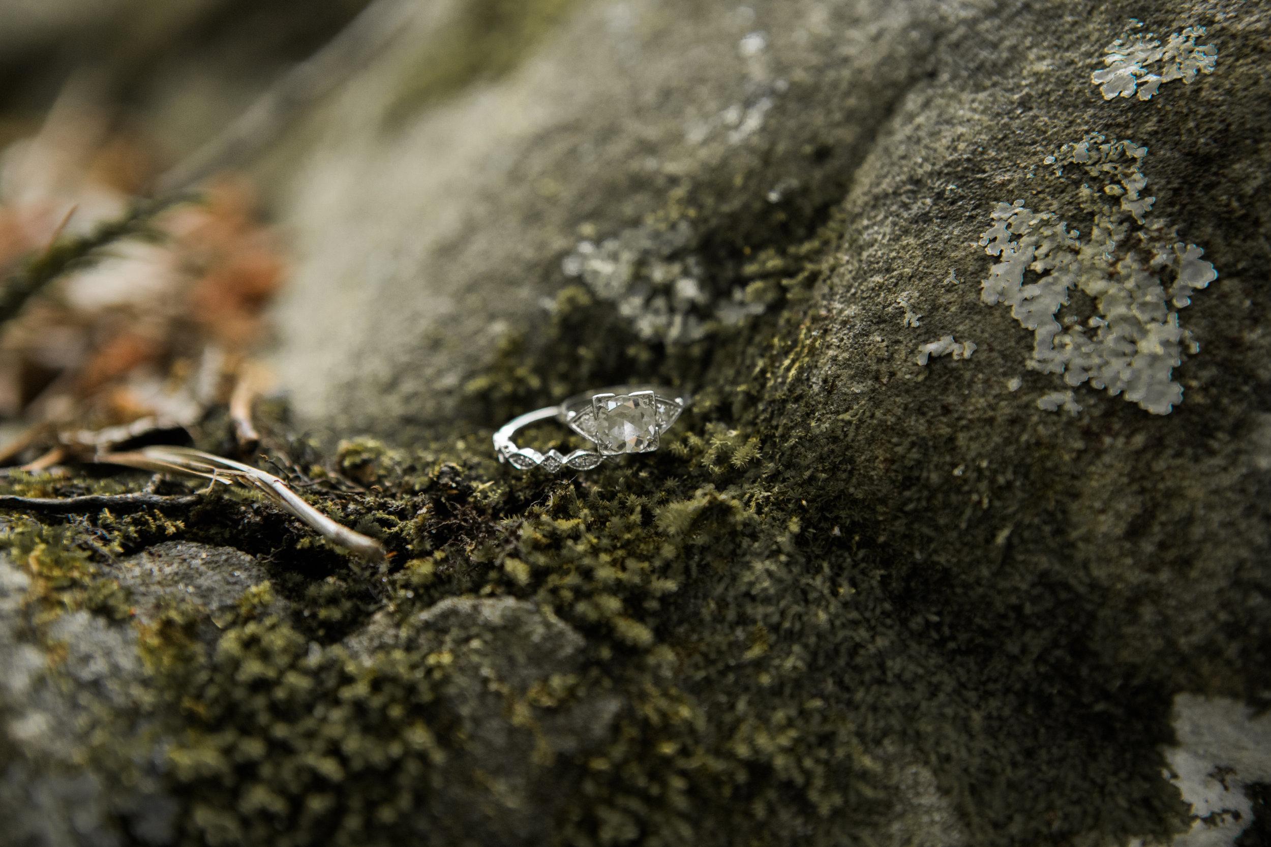 Moss Rock Preserve | Engagement Ring