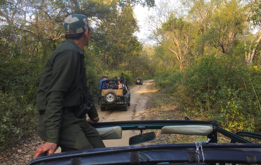 jeep_image.jpg