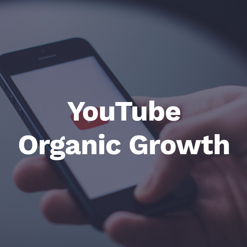 organic growth strategies - We specialize ranking videos in search results on YouTube so clients' videos contents appears in search results day in and day out
