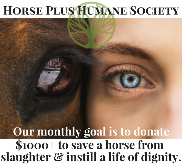 Horse Plus Humane Society (1).png