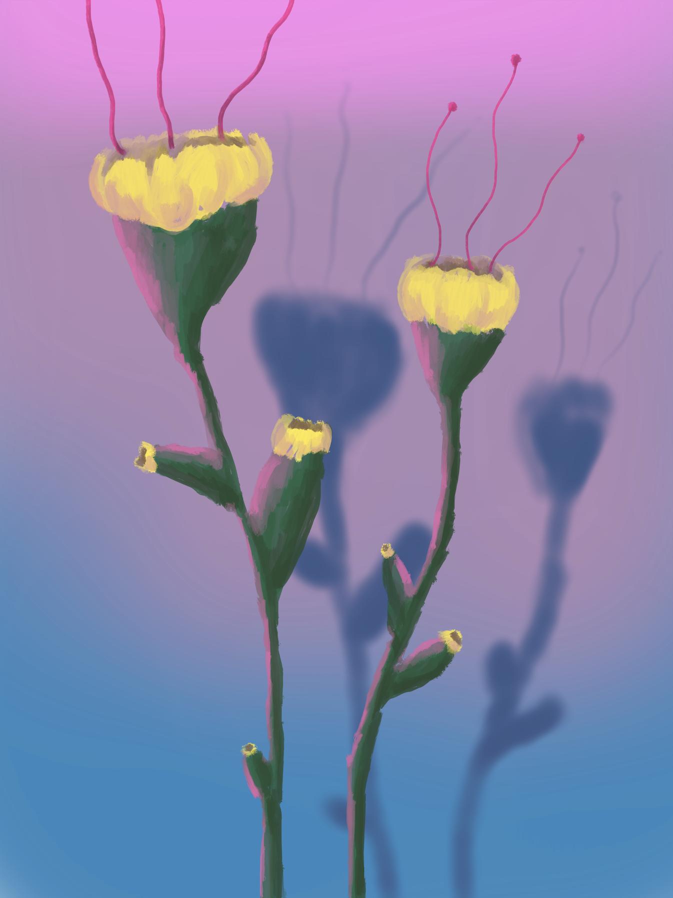 fleurs 1, acrylic on canvas, 45x60cm