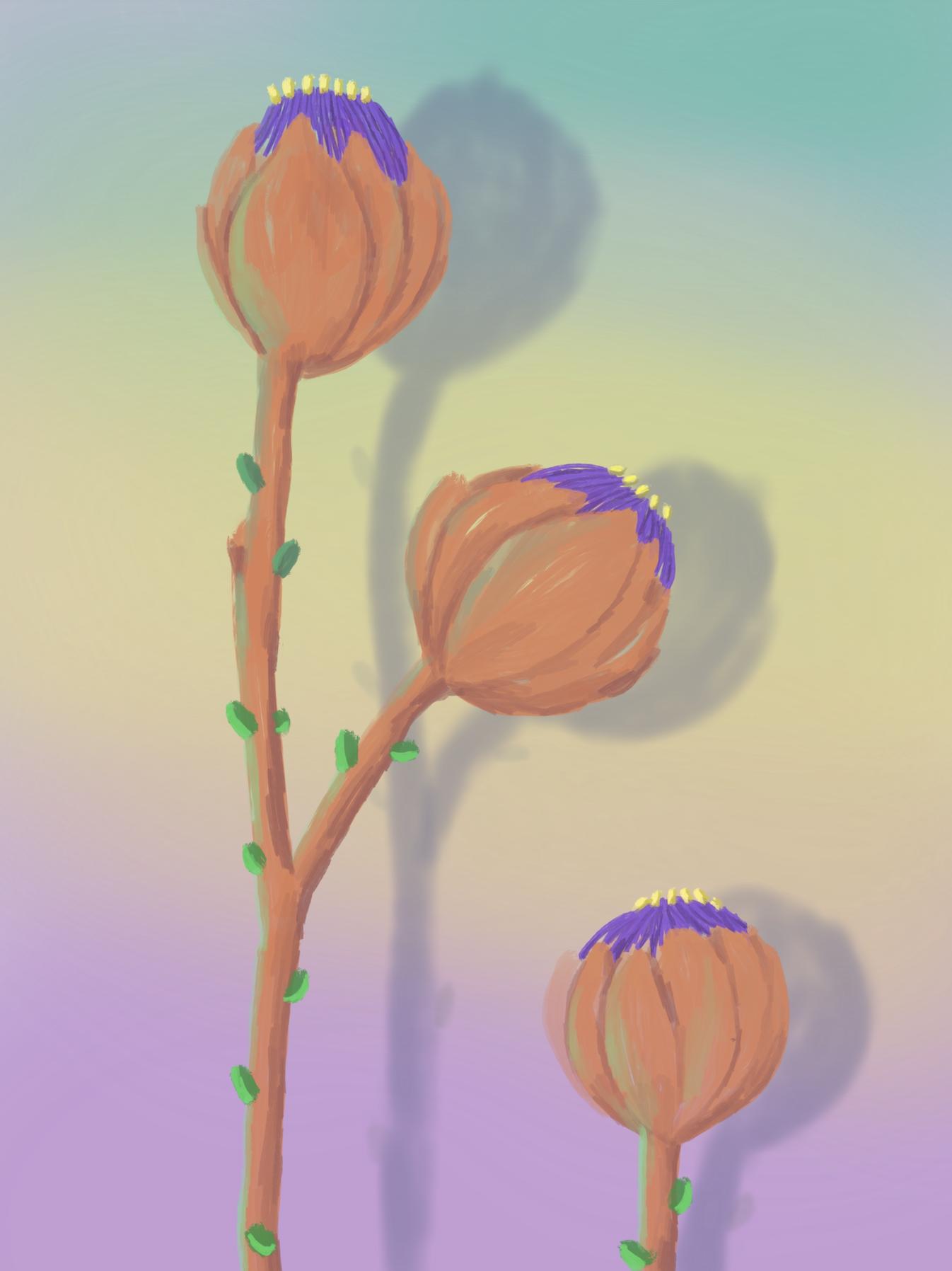 fleurs 2, acrylic on canvas, 45x60cm