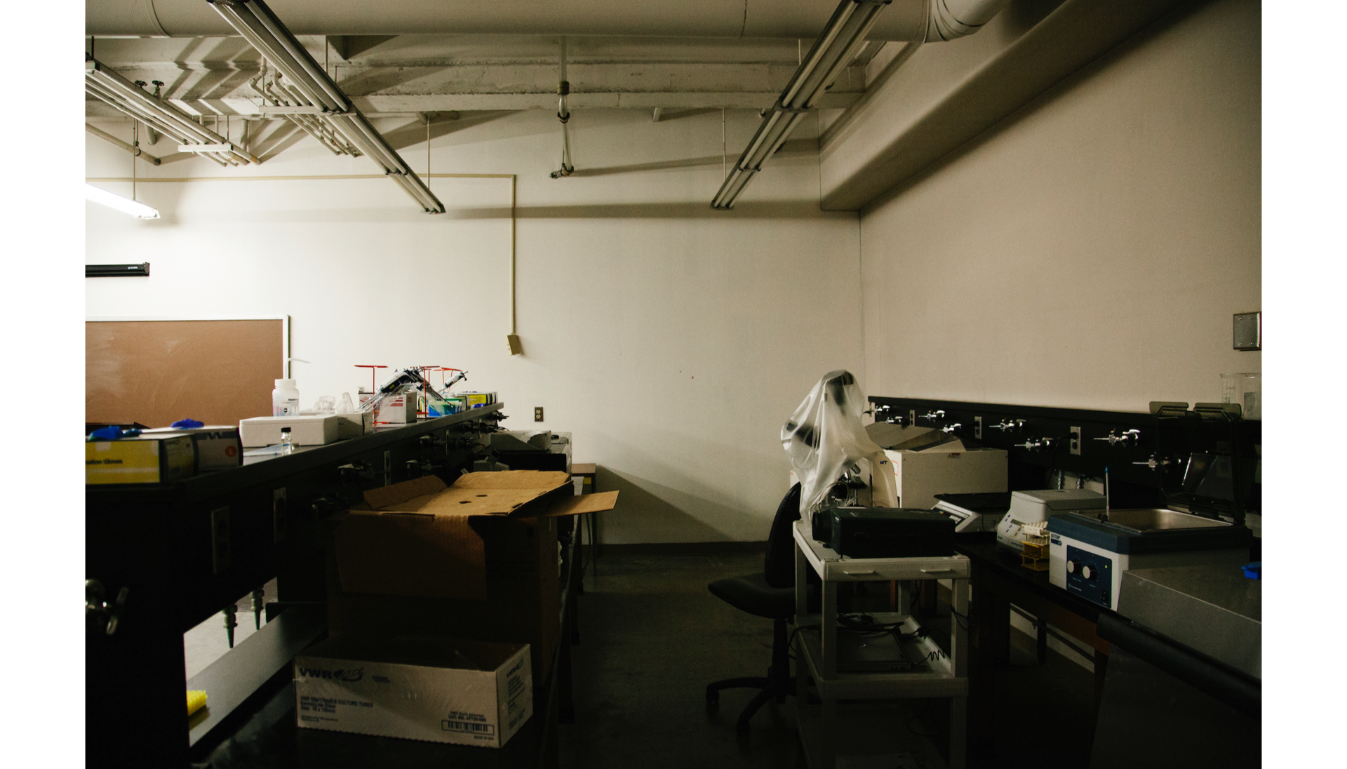 Inside Percival Stern Hall: lab equipment lies scattered throughout a dark and dreary laboratory