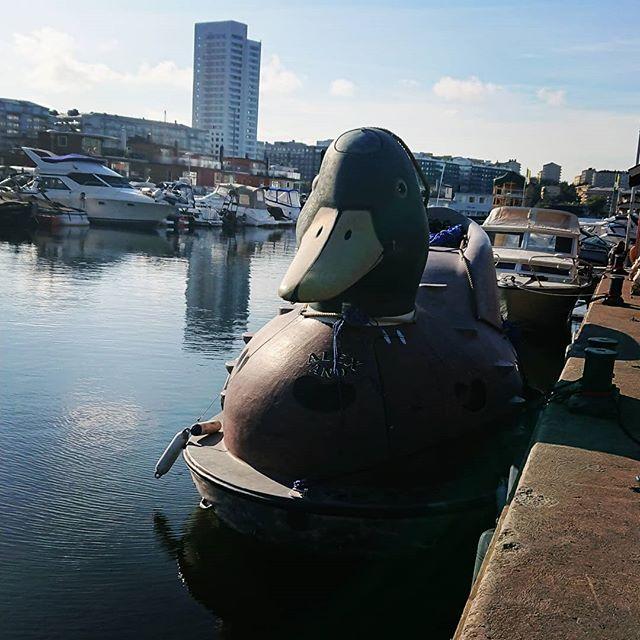 Sommaren är över och upptagning av diverse flytetyg är i full gång. Idag njuter vi av ☀ #marinentreprenad #pampasmarinentreprenad #summerisover