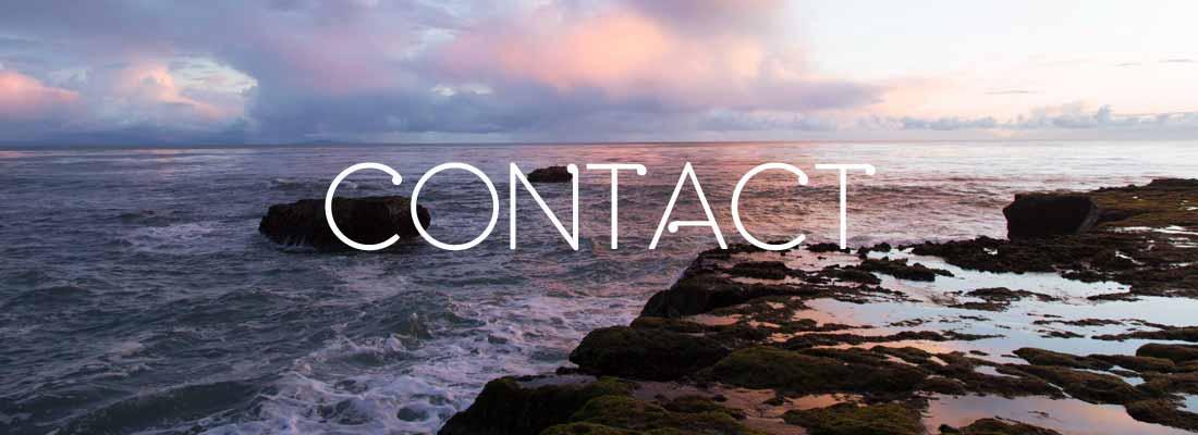 contact-nz-prophetic-network.jpg